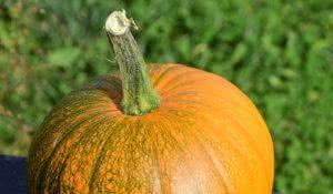 nutrientes-aprenda-a-reaproveitar-casca-e-talos-dos-alimentos-4
