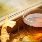 Conheça seleção de chás especiais para tomar no outono