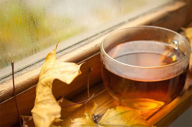 Xicara de chá próximo de folhas e janela