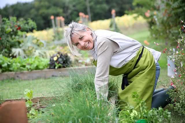 Imagem de mulher em plantação de ervas em casa