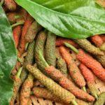 Pimenta-longa: benefícios e propriedades para a saúde
