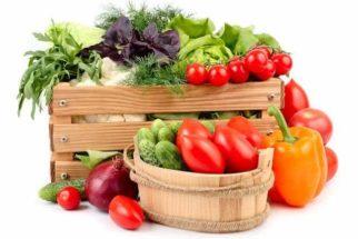 Bioativos: os alimentos que ativam a vida