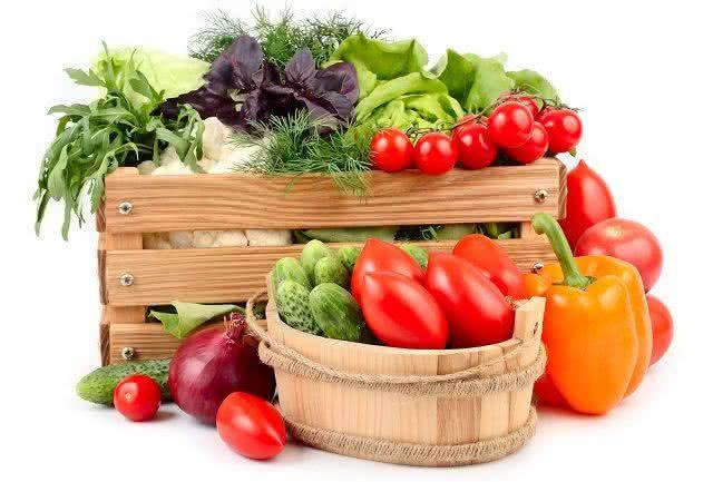 bioativos-os-alimentos-que-ativam-vida