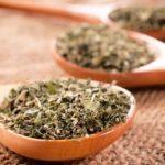 Efeitos colaterais: descubra os do chá de orégano