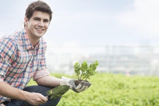 Imagem de homem em plantio segurando muda
