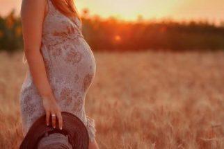 Plantas consideradas 'amigas' das mulheres grávidas