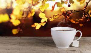 Cup of hot tea on background lanscape summer autumn