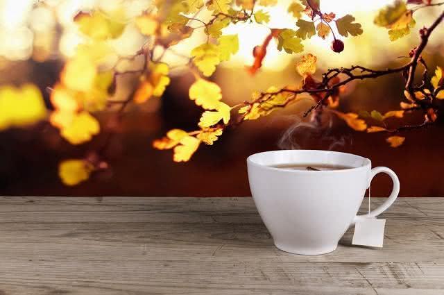 Utilizando bem o chá do celião