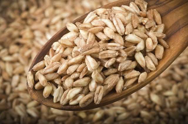 Conheça a espelta e seus benefícios para a sua saúde