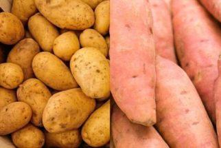 Entenda a diferença entre batata inglesa e batata doce