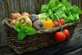 O que não deve faltar nas suas compras para uma vida saudável?