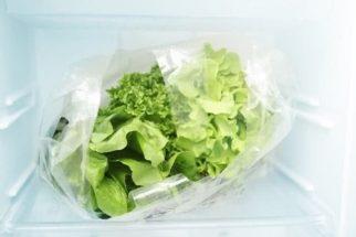 Técnica pode evitar o ressecamento das folhas de vegetais na geladeira