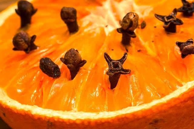 10-motivos-do-limao-ser-uma-das-frutas-mais-eficazes-no-dia-a-dia repelente