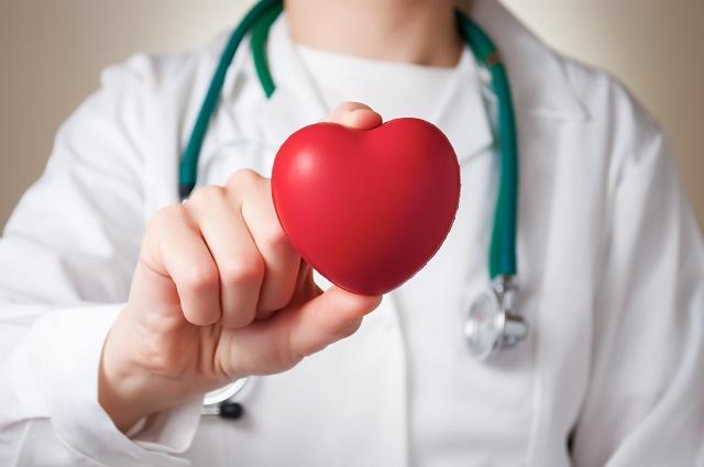 Médico segurando um coração