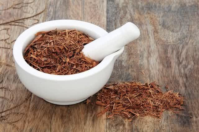 Conheça os chás mais populares de cada região do País