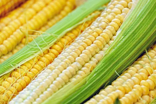 conheca-os-principais-vegetais-para-equilibrar-a-pressao-arterial milho