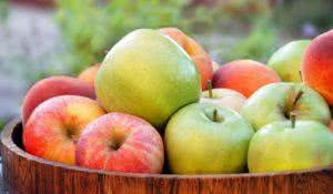 green and red apples in wooden tray outdoor