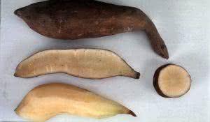 trate-diabetes-emagreca-e-previna-o-cancer-com-suco-da-batata-yacon