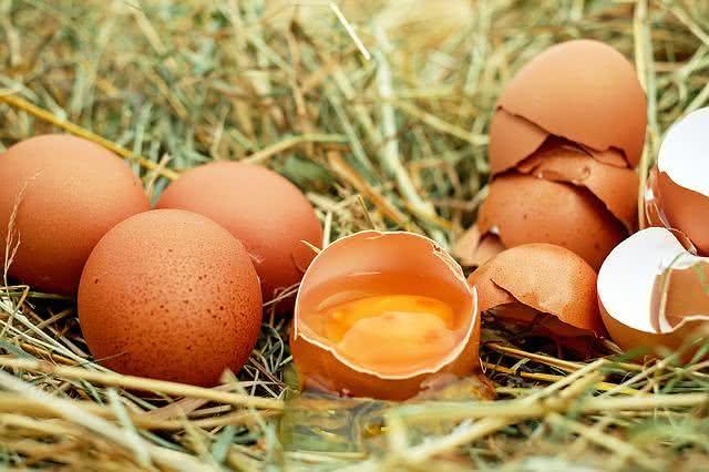 6-alimentos-que-protegem-os-olhos-contra-qualquer-mal-ovo