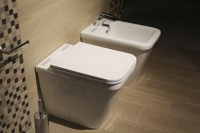 8-formas-de-limpar-a-casa-em-um-piscar-de-olhos-aprenda-vasi-sanitario