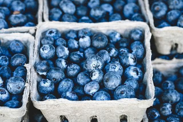 as-frutas-podem-te-ajudar-a-eliminar-o-acido-urico-do-corpo-mirtilo