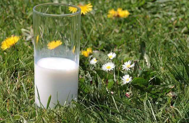 aprenda-truques-caseiros-para-espantar-as-moscas-leite