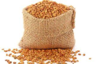 Essa semente é capaz de limpar o fígado e controlar a glicose