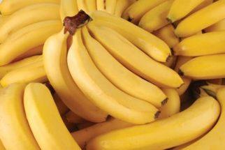 Em alguns anos não haverá mais bananas, afirma estudioso