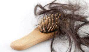 Close-up of a brush with lost hair on it, on white background