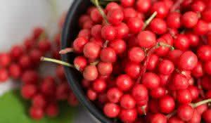 Schisandra chinensis or five flavor berry