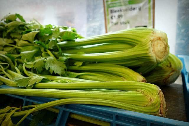 vegetais-que-se-reproduzem-facilmente-se-plantados-em-casa-aipo