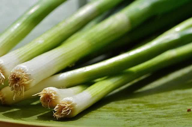 vegetais-que-se-reproduzem-facilmente-se-plantados-em-casa-cebolinha