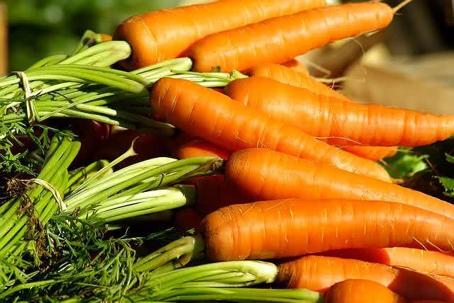 vegetais-que-se-reproduzem-facilmente-se-plantados-em-casa-cenoura