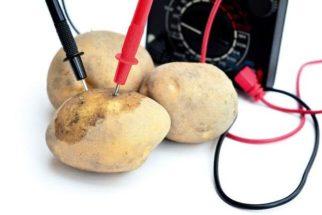 Luz 'natural': ilumine sua casa usando batatas