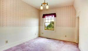 Empty room in old house with creamy walls and wallpaper. Purple carpet floor with purple color curtains
