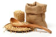 7 benefícios da soja para o nosso organismo