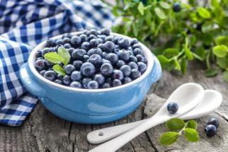 Blueberry é um aliado na prevenção do diabetes