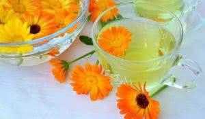 Calendula tea in glass cups and pot marigold flowers.