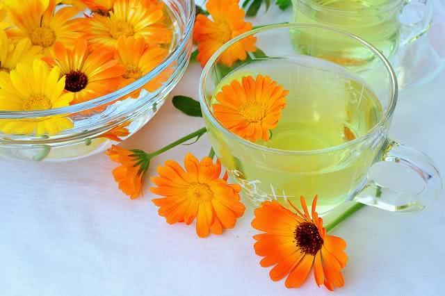 Conheça o chá que elimina gastrite nervosa e refluxo