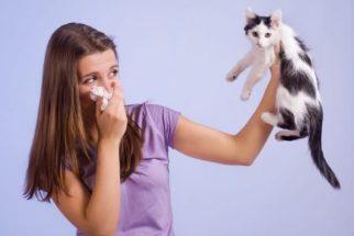 Conheça 5 mitos que envolvem as alergias e tire suas dúvidas