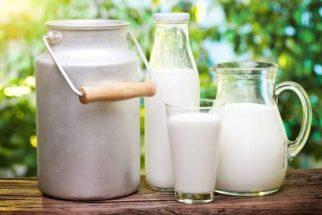 Nutricionista esclarece dúvidas sobre o consumo do leite