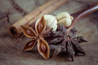 Plantas capazes de tratar transtornos no aparelho gástrico