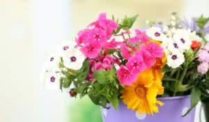 Bouquet of colorful flowers in decorative vase, on table, on bright background