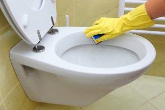 4 passos caseiros para deixar o vaso sanitário limpinho