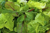 Truque para que as folhas das verduras durem mais tempo