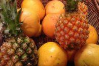 Laranja e abacaxi possuem maior risco de contaminação por agrotóxico