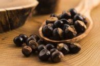 Pesquisa confirma: guaraná é antioxidante e anti-inflamatório