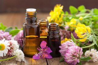 Floralterapia: cuide da mente e do corpo apenas usando florais