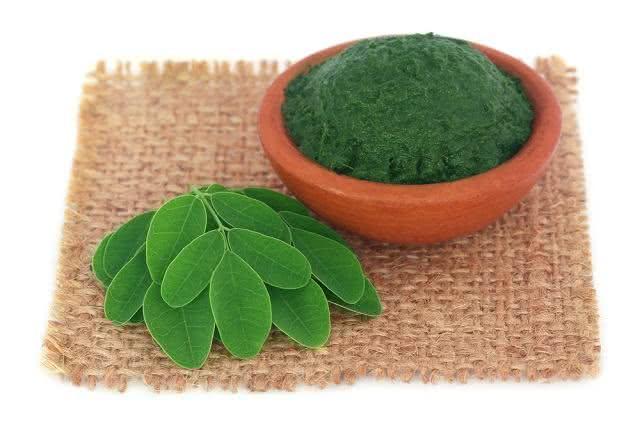 Moringa: a planta que é tratada como milagrosa por botânicos e biólogos