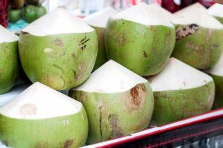 Como faço para escolher o melhor coco na hora da compra?